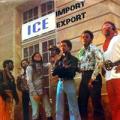 ICE - import export