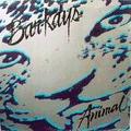 BAR-KAYS - animal