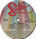 GAIL FREEMAN - danger in the airwaves