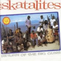 SKATELITES - return of the big guns