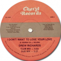 DREW RICHARDS - i don't want to lose your love