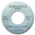NATHAN BARTELL - some one like you / runnig throught the night