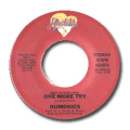 NUMONICS - one more try / it' so easy to be mislead
