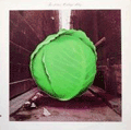 METERS - cabbage alley