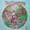 TAUDI SYMPHONY - taudi symphony