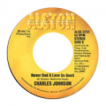 CHARLES JOHNSON - baby i cried, cried, cried / never had a love so good