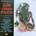 ALBERTO BALDAN BEMBO - codice d'amore orientale