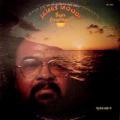 JAMES MOODY - sun journey