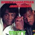 JAMES BROWN & AFRIKA BAMBAATAA - unity