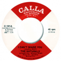 NATURALS - i can't share you/ young generation
