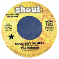 NATURALS - cold day in hell (mono) / cold day in hell (stereo)