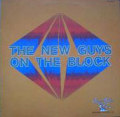 NEW GUYS ON   BLOCK - the new guys on  the block