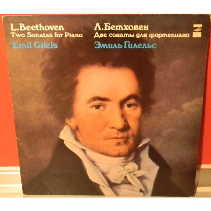 ludwig van beethoven essay Free essay on biography of ludwig van beethoven available totally free at echeatcom, the largest free essay community.