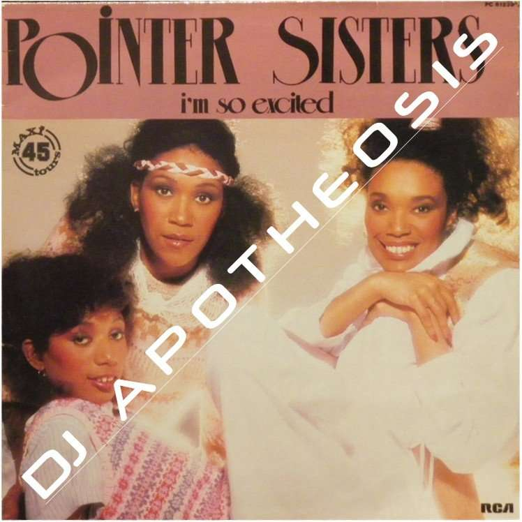 im so excited by pointer sisters 12inch with djapotheosis