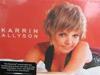 karrin allyson wild for you(import usa digipak)