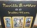 neville brothers yellow moon