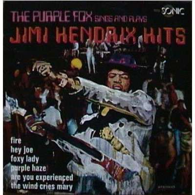 The Purple Fox The Purple Fox sings and plays Jimi Hendrix Hits