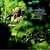 HORACE SILVER - THE CAPE VERDEAN BLUES - CD