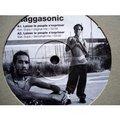 RAGGASONIC - Faut pas m'prendre pour un ane / Laisse le peuple s'exprimer (orig mix, dancehall mix, dancehall ins - 12 inch 33 rpm
