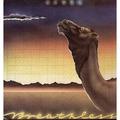 CAMEL - Breathless - LP