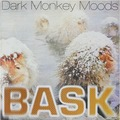 BASK - Dark Monkey Moods - LP x 2