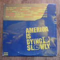 VARIOUS ARTISTS - america is dying slowly - 33T x 2
