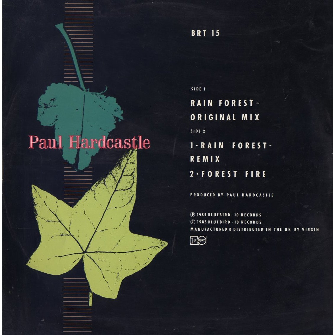 hardcastle, paul rain forest oriiginal mixb/ rain forest remix - forest fire
