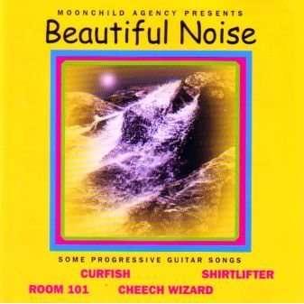 Curfish / Shirtlifter / Cheech Wizard / Room 101 Beautiful Noise - Some Progressive Guitar Songs