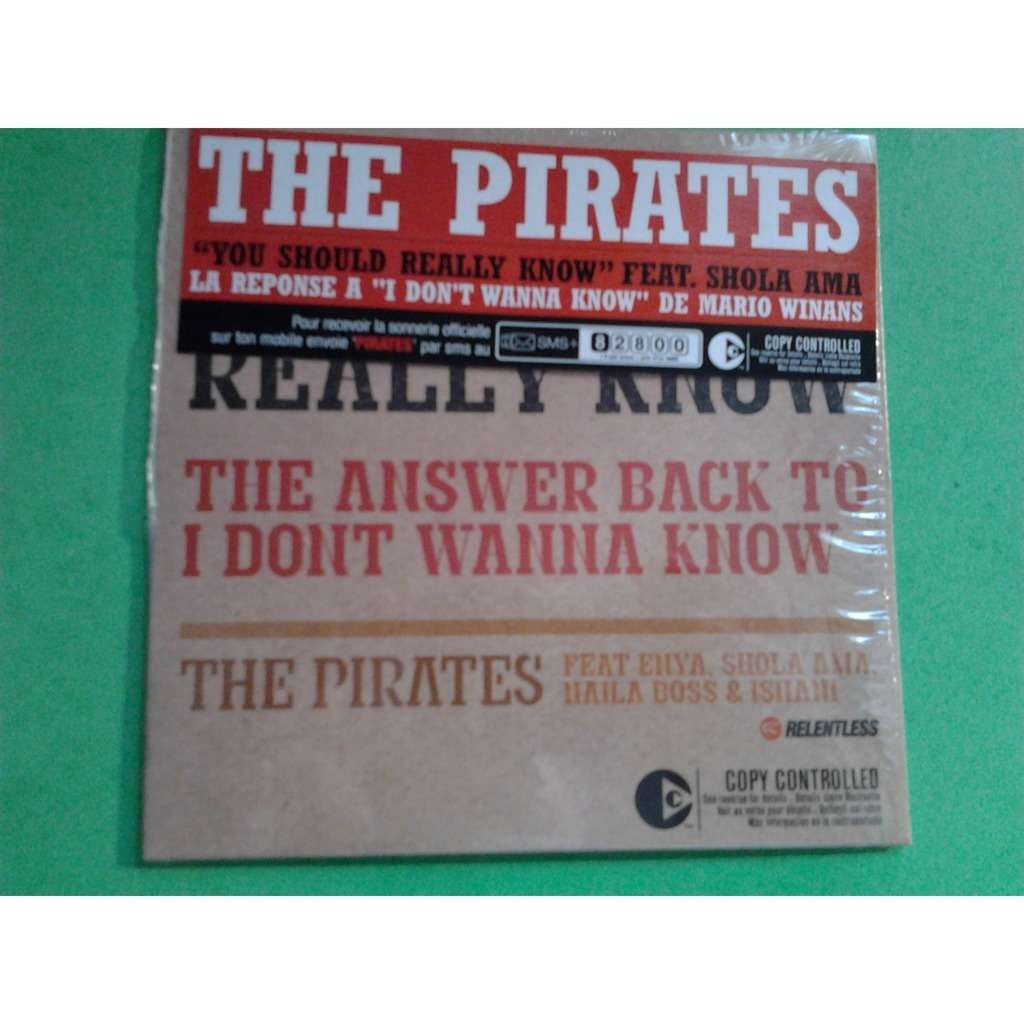 THE PIRATES FEAT ENYA YOU SHOULD REALLY KNOW