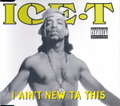 ICE T - I Ain't New Ta This - CD single