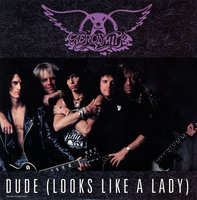 Aerosmith - Dude(extended Rockin' Dude/love In An Elevator(live)/walk This Way(live))