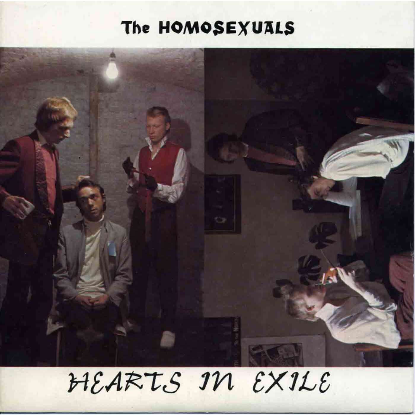 HOMOSEXUALS (the) hearts in exile